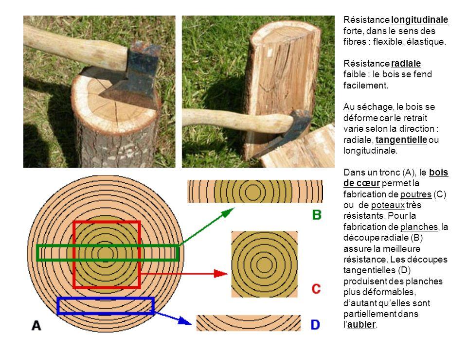Résistance longitudinale forte, dans le sens des fibres : flexible, élastique.