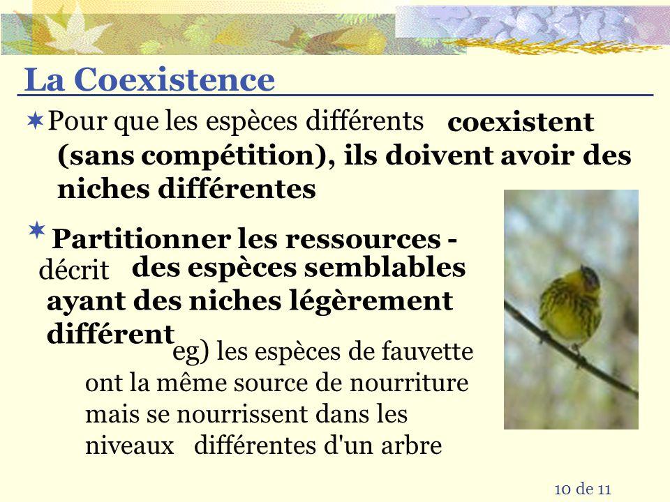 La Coexistence Pour que les espèces différents