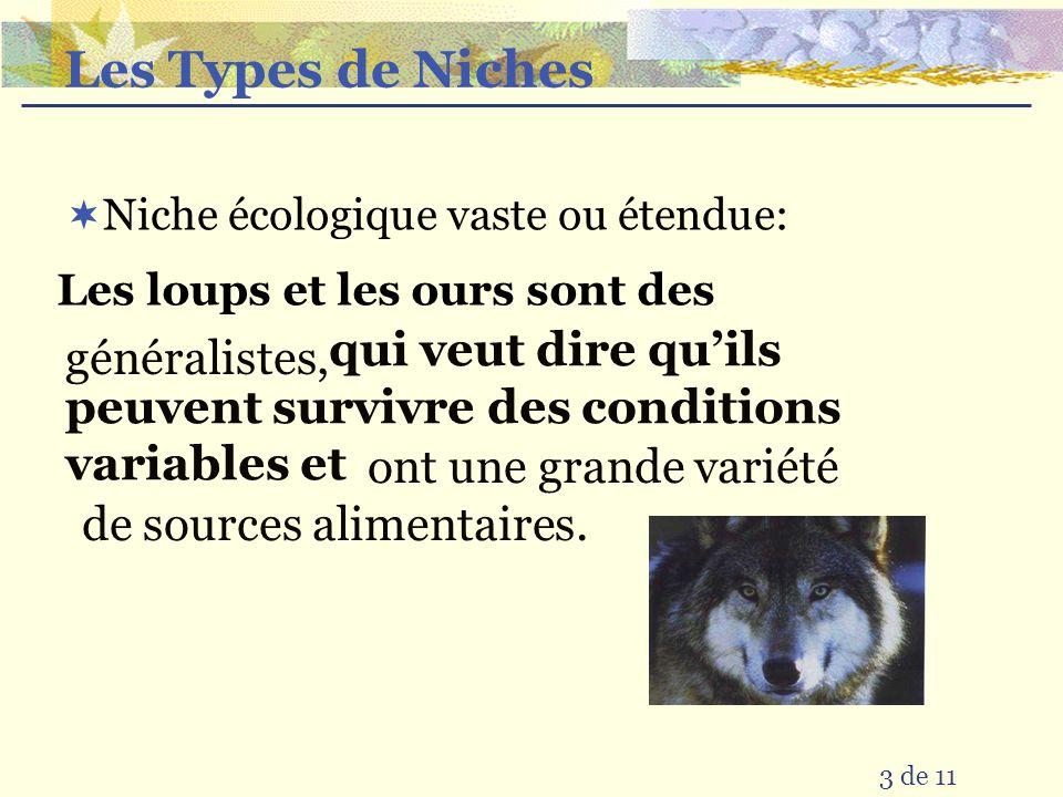 Les Types de Niches Niche écologique vaste ou étendue: Les loups et les ours sont des.