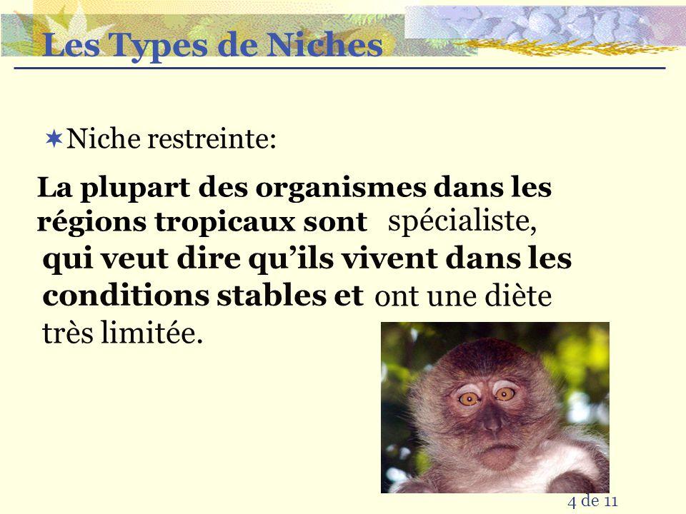 Les Types de Niches spécialiste,