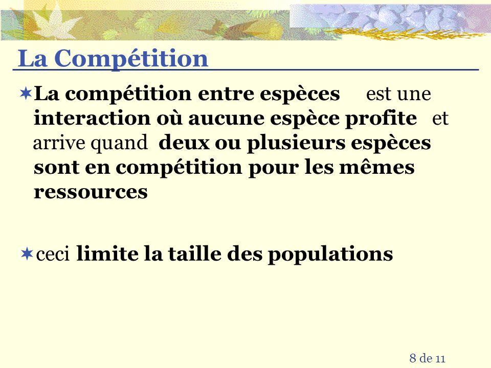 La Compétition est une et arrive quand