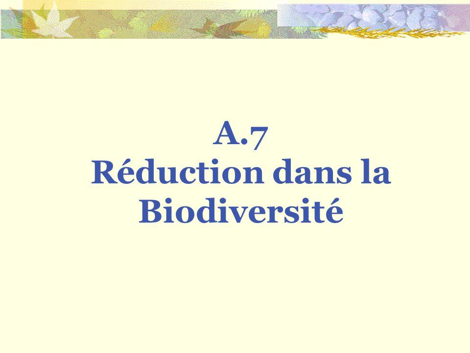 Réduction dans la Biodiversité