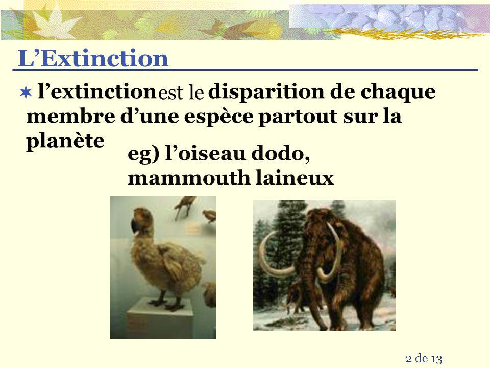 L'Extinction est le. disparition de chaque membre d'une espèce partout sur la planète. l'extinction.