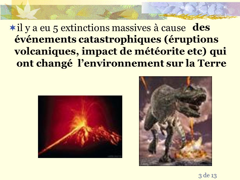 il y a eu 5 extinctions massives à cause