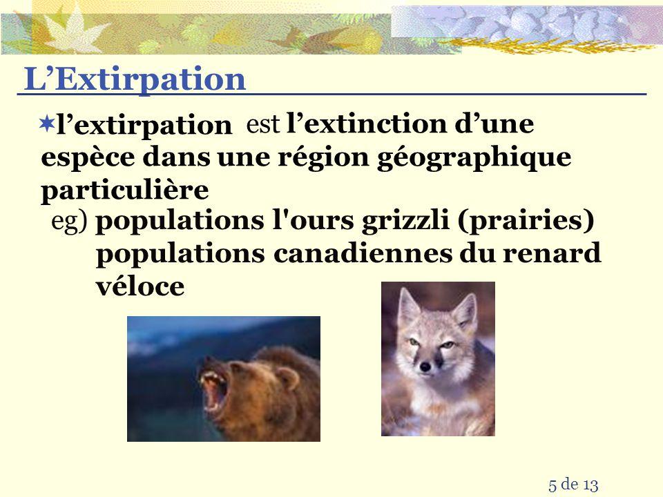 L'Extirpation est. l'extinction d'une espèce dans une région géographique particulière. l'extirpation.
