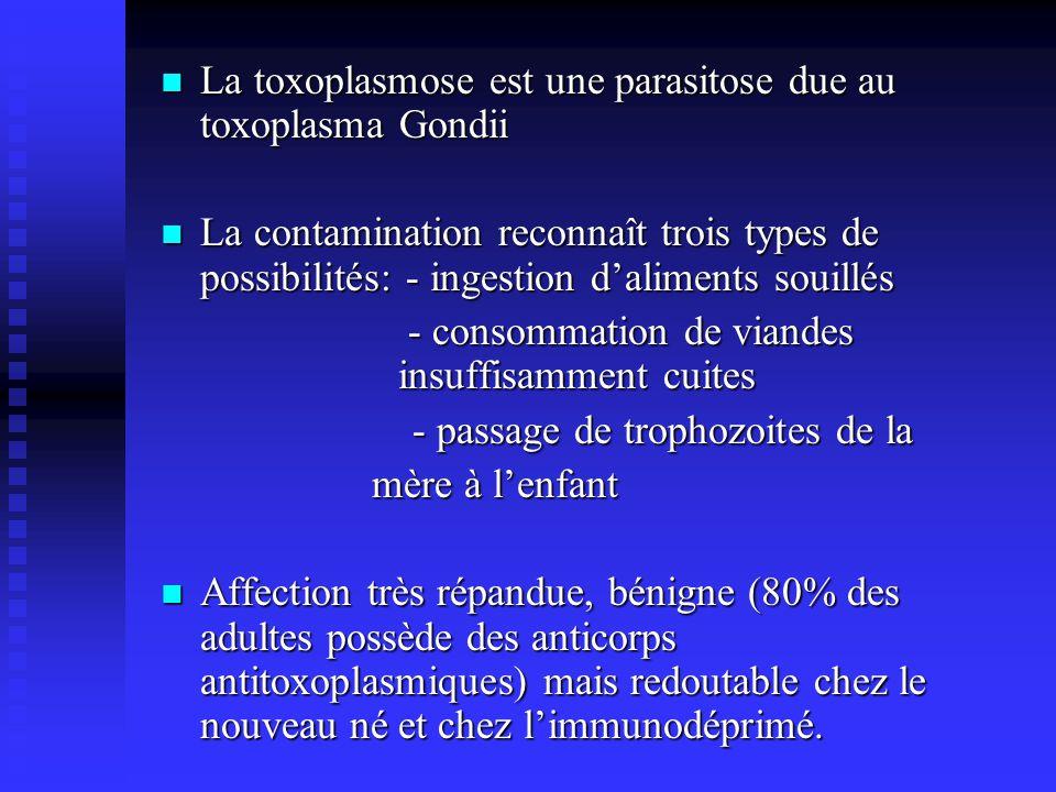 La toxoplasmose est une parasitose due au toxoplasma Gondii