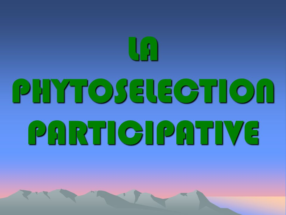 LA PHYTOSELECTION PARTICIPATIVE