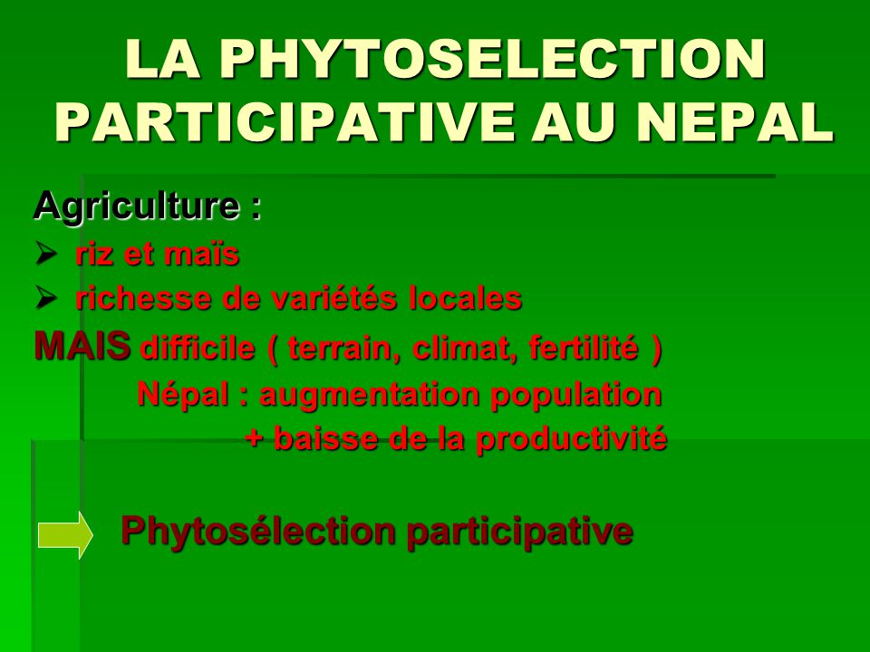 LA PHYTOSELECTION PARTICIPATIVE AU NEPAL