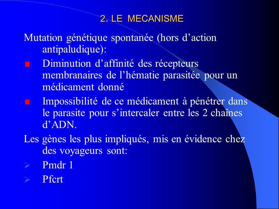 Mutation génétique spontanée (hors d'action antipaludique):