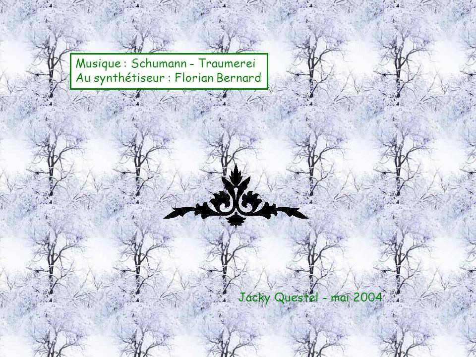 Musique : Schumann - Traumerei