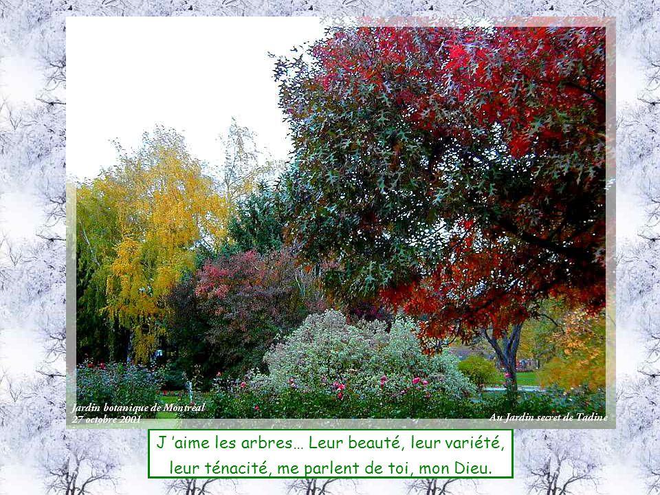 J 'aime les arbres… Leur beauté, leur variété,
