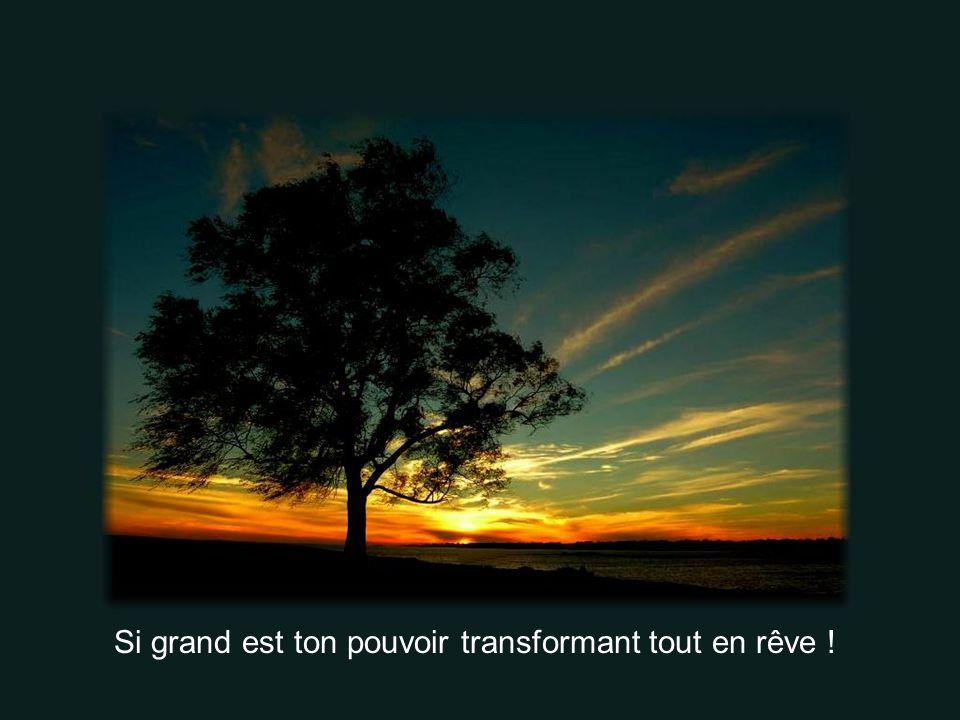 Si grand est ton pouvoir transformant tout en rêve !
