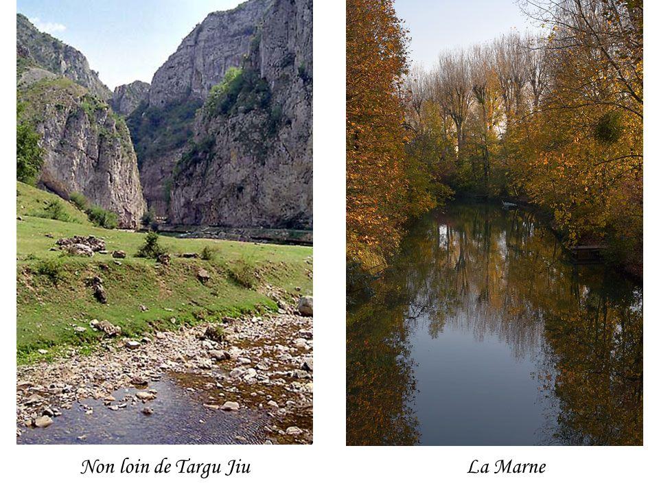 Non loin de Targu Jiu La Marne