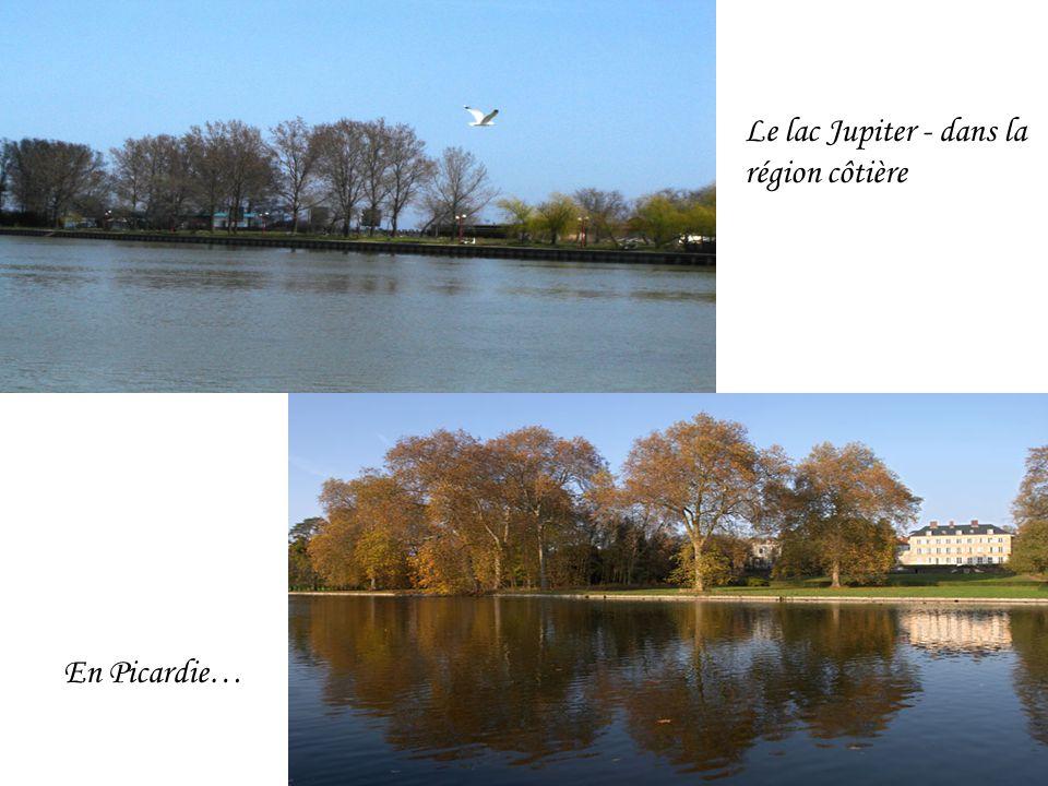 Le lac Jupiter - dans la région côtière