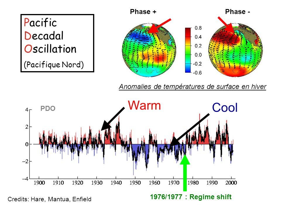 Warm Cool Pacific Decadal Oscillation (Pacifique Nord) Phase + Phase -