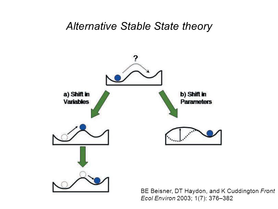 Alternative Stable State theory