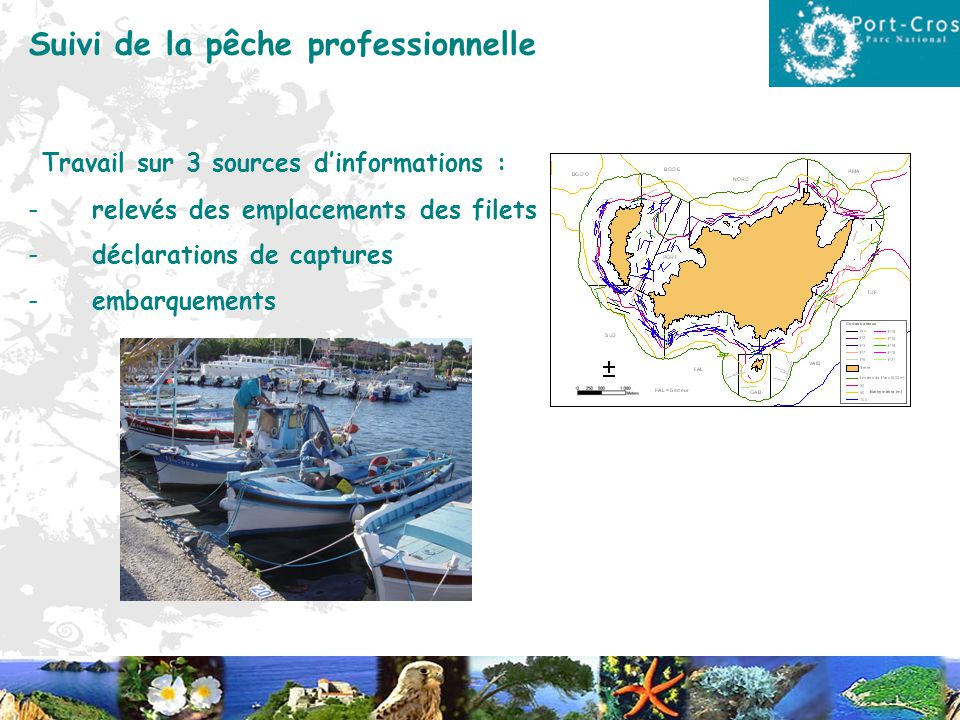 Suivi de la pêche professionnelle