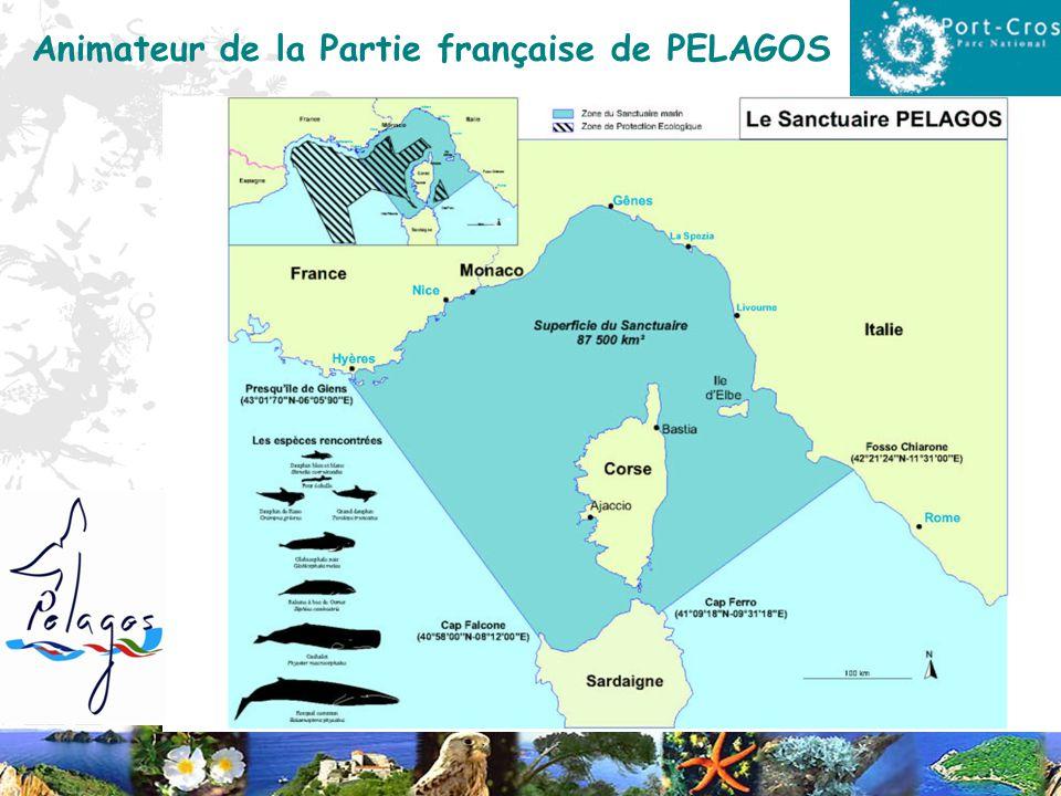 Animateur de la Partie française de PELAGOS