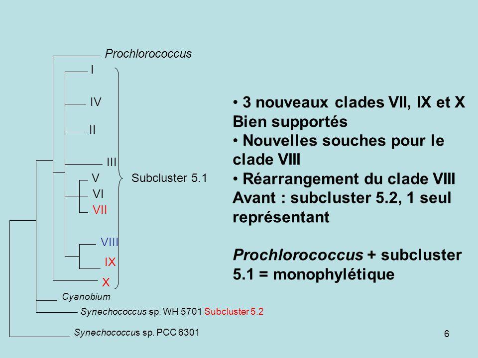3 nouveaux clades VII, IX et X Bien supportés