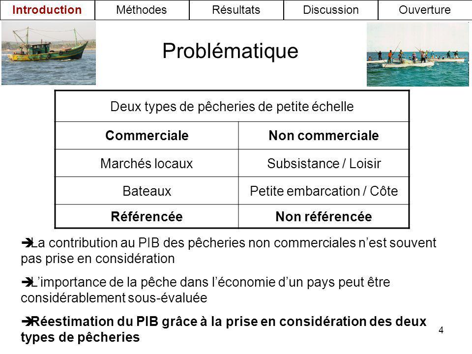 Problématique Deux types de pêcheries de petite échelle Commerciale