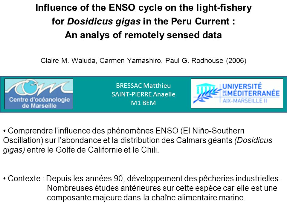 Influence of the ENSO cycle on the light-fishery