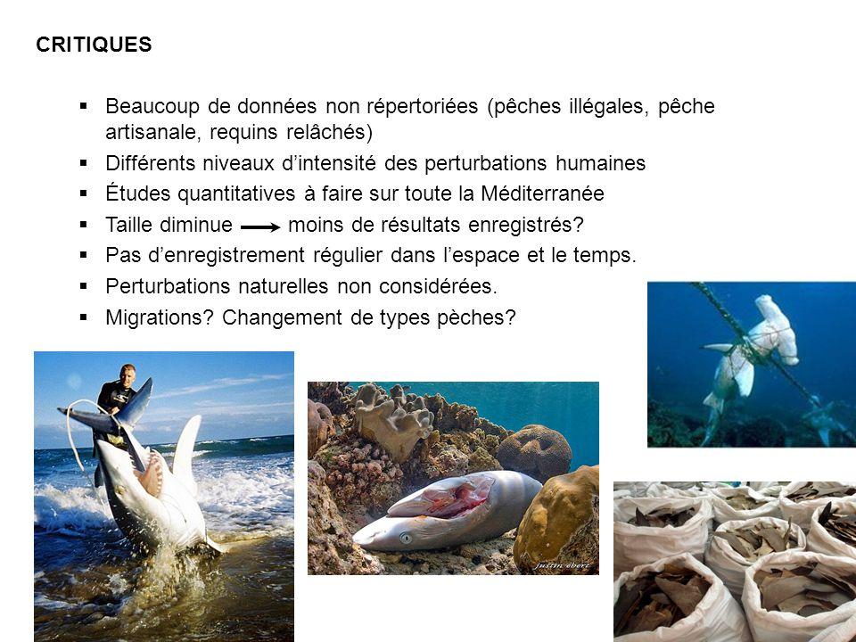 CRITIQUES Beaucoup de données non répertoriées (pêches illégales, pêche artisanale, requins relâchés)