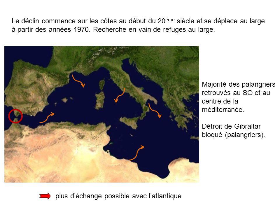 Le déclin commence sur les côtes au début du 20ème siècle et se déplace au large à partir des années 1970. Recherche en vain de refuges au large.