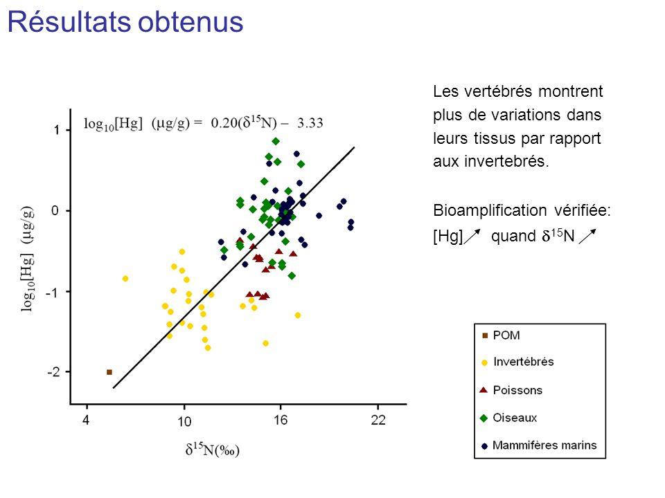 Résultats obtenus Les vertébrés montrent plus de variations dans leurs tissus par rapport aux invertebrés.