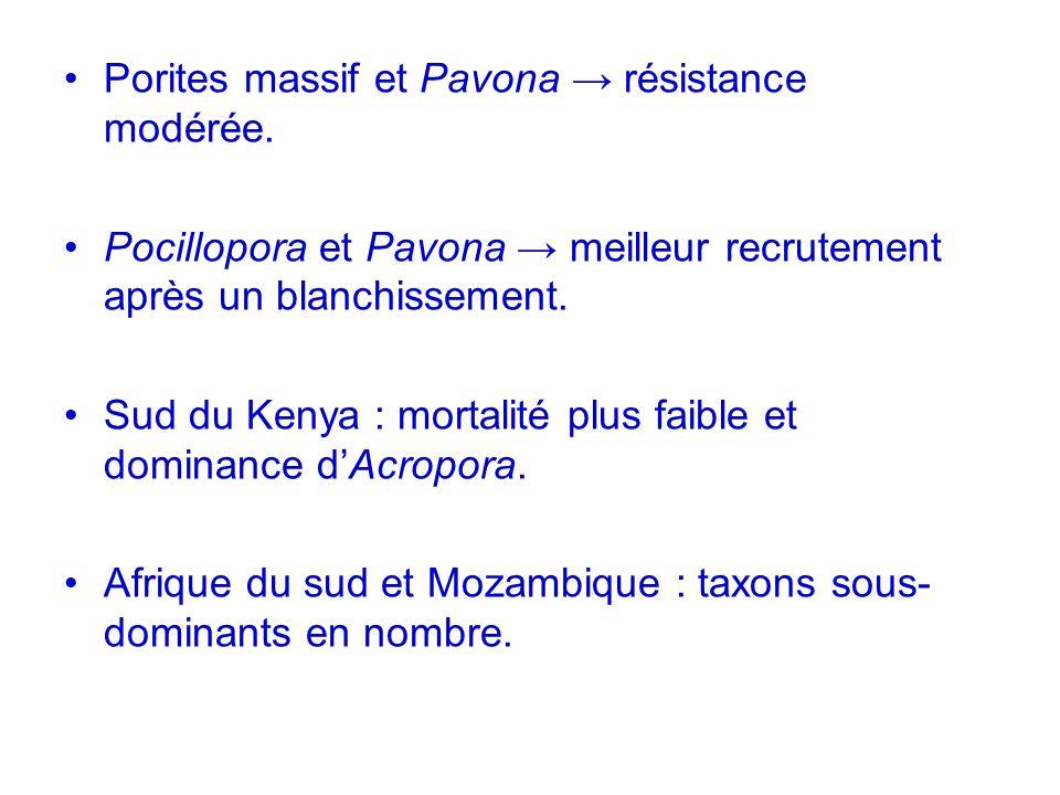 Porites massif et Pavona → résistance modérée.