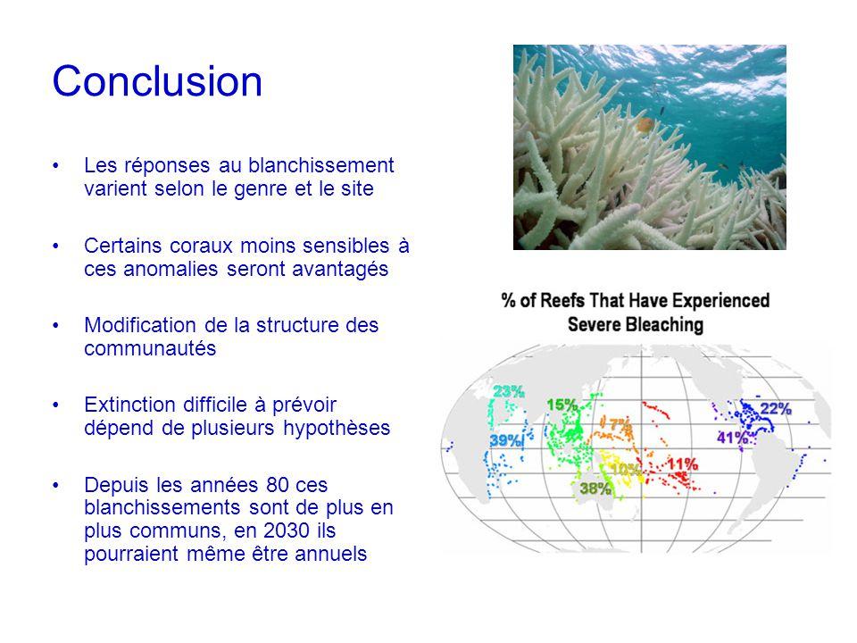 Conclusion Les réponses au blanchissement varient selon le genre et le site. Certains coraux moins sensibles à ces anomalies seront avantagés.