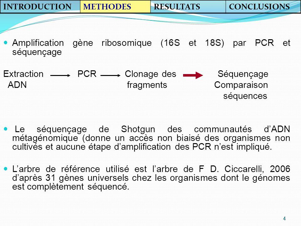 Amplification gène ribosomique (16S et 18S) par PCR et séquençage