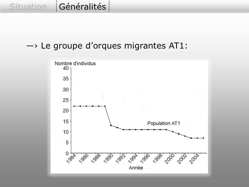 Situation Généralités ―› Le groupe d'orques migrantes AT1: