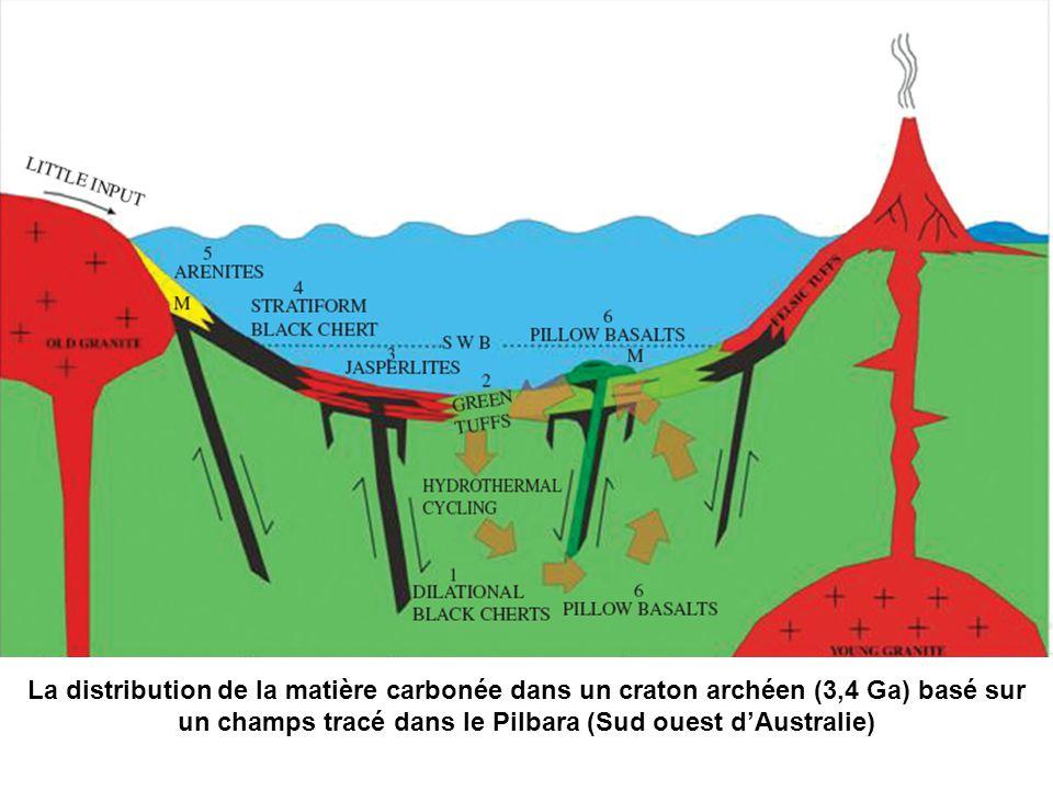 La distribution de la matière carbonée dans un craton archéen (3,4 Ga) basé sur un champs tracé dans le Pilbara (Sud ouest d'Australie)