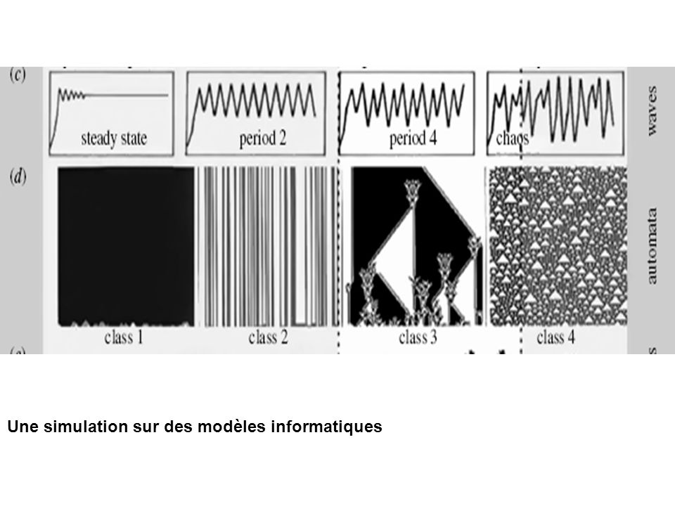 Une simulation sur des modèles informatiques