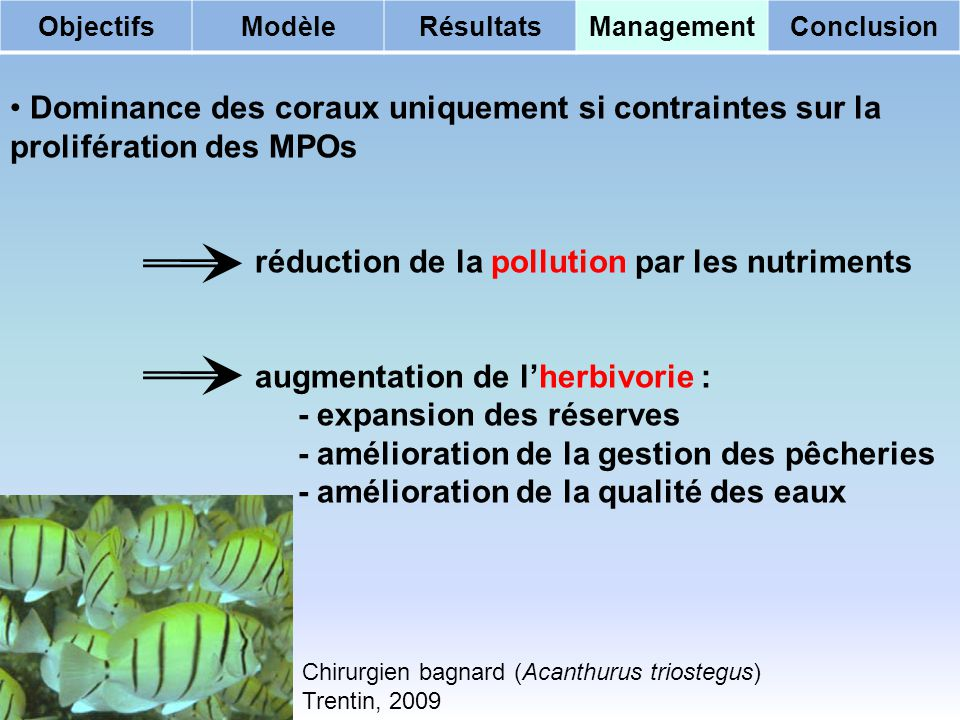 réduction de la pollution par les nutriments