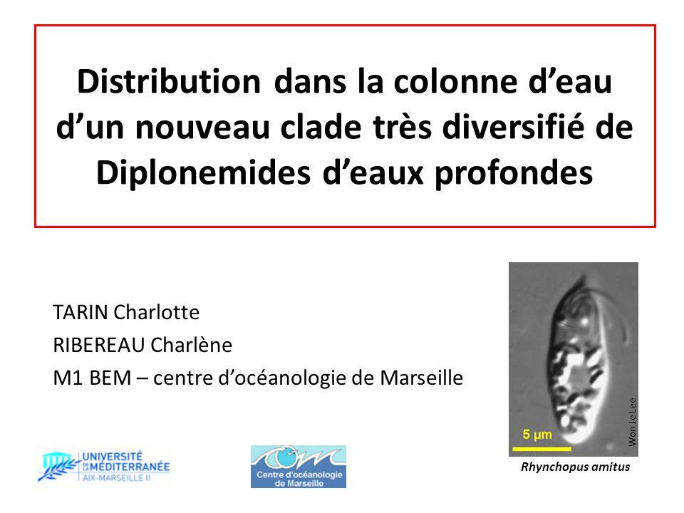 Distribution dans la colonne d'eau d'un nouveau clade très diversifié de Diplonemides d'eaux profondes