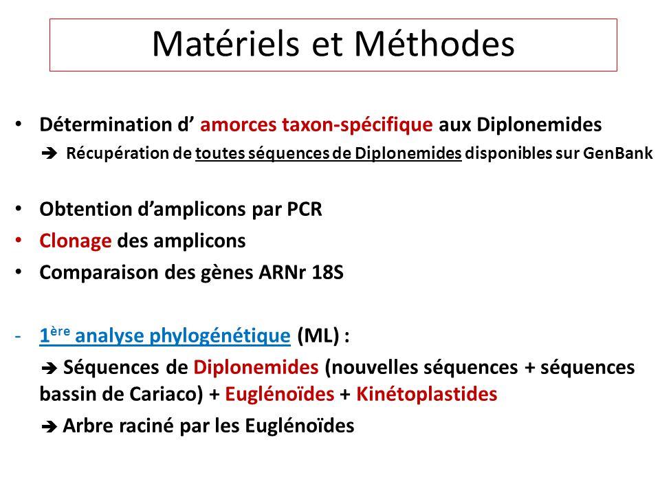 Matériels et Méthodes Détermination d' amorces taxon-spécifique aux Diplonemides.