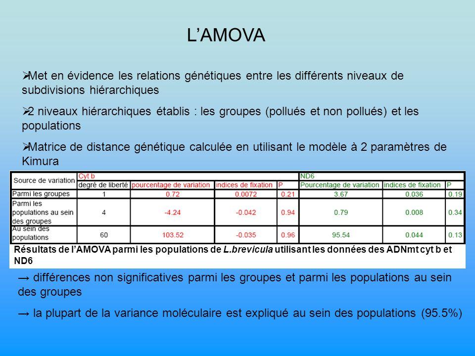 L'AMOVA Met en évidence les relations génétiques entre les différents niveaux de subdivisions hiérarchiques.