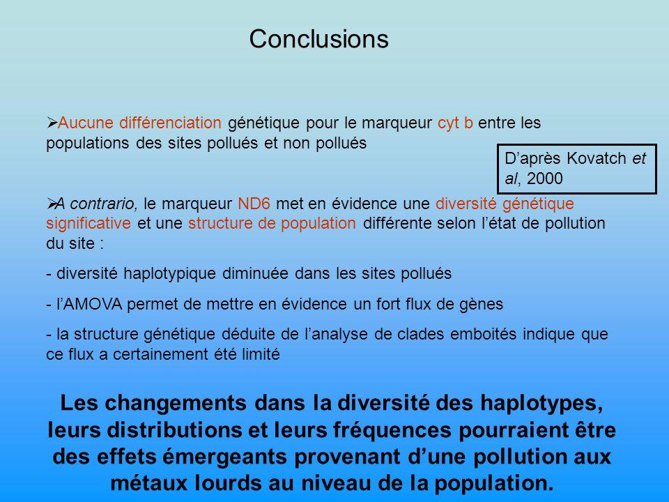Conclusions Aucune différenciation génétique pour le marqueur cyt b entre les populations des sites pollués et non pollués.