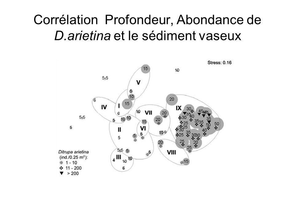 Corrélation Profondeur, Abondance de D.arietina et le sédiment vaseux