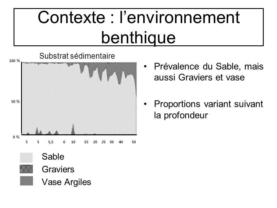 Contexte : l'environnement benthique
