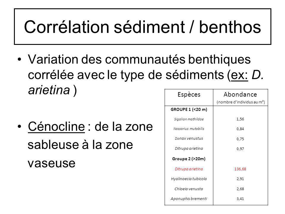 Corrélation sédiment / benthos