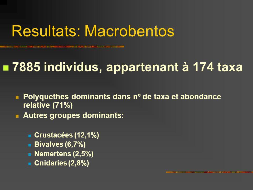 Resultats: Macrobentos