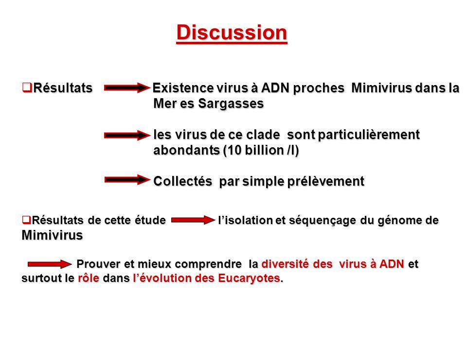 Discussion Résultats Existence virus à ADN proches Mimivirus dans la