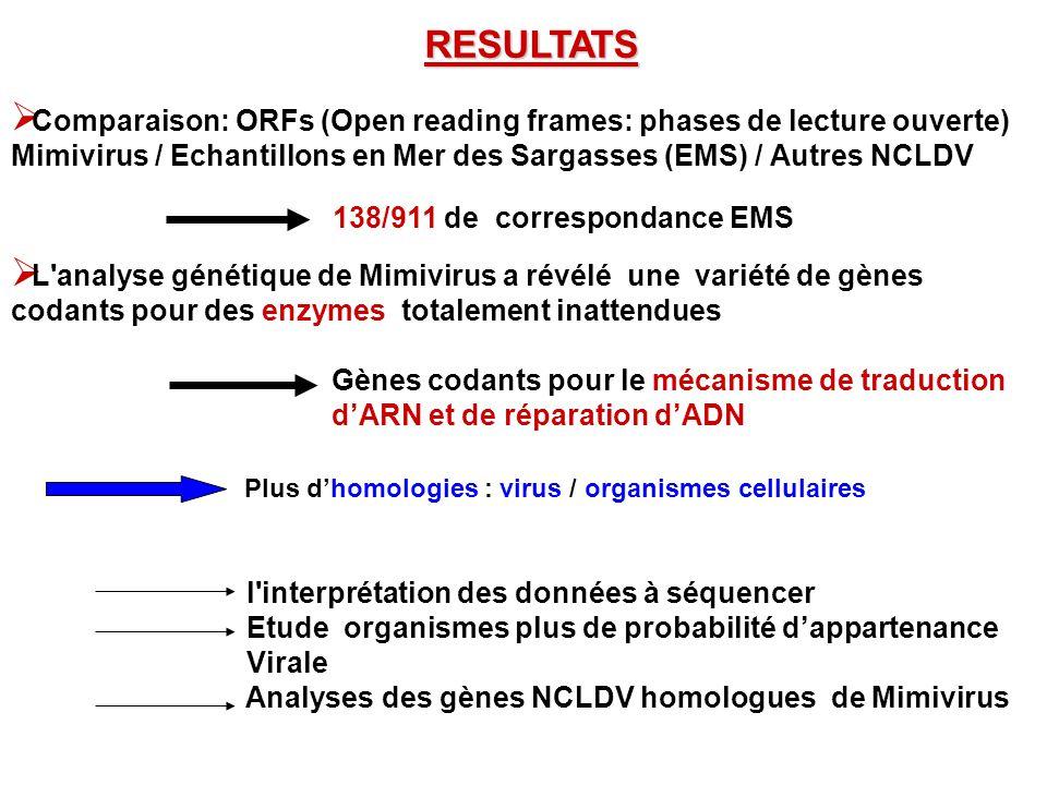 RESULTATS Comparaison: ORFs (Open reading frames: phases de lecture ouverte) Mimivirus / Echantillons en Mer des Sargasses (EMS) / Autres NCLDV.