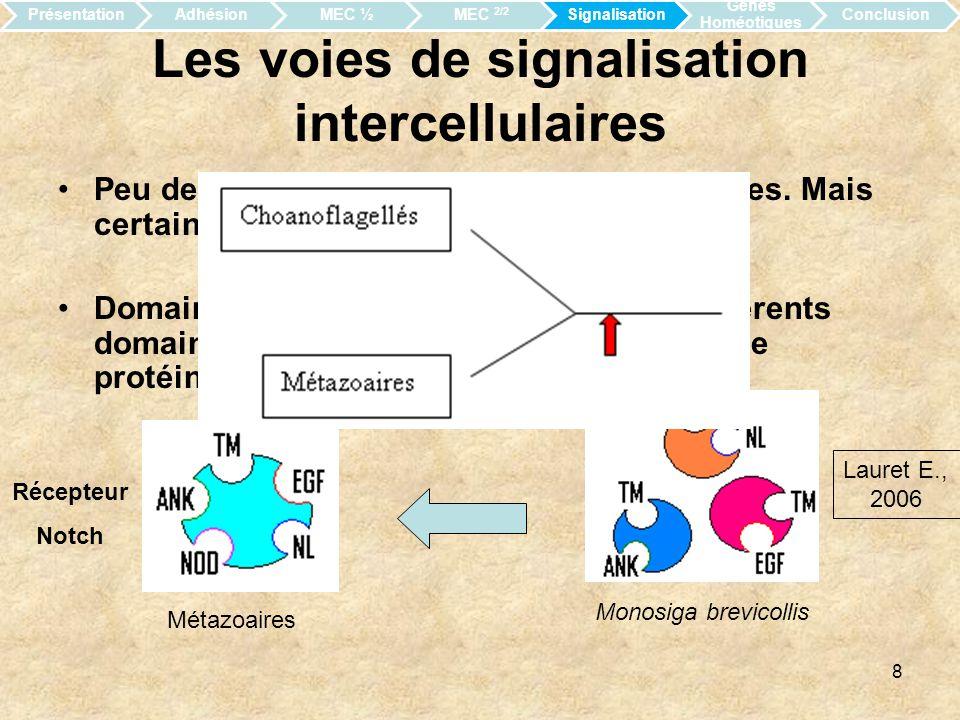 Les voies de signalisation intercellulaires