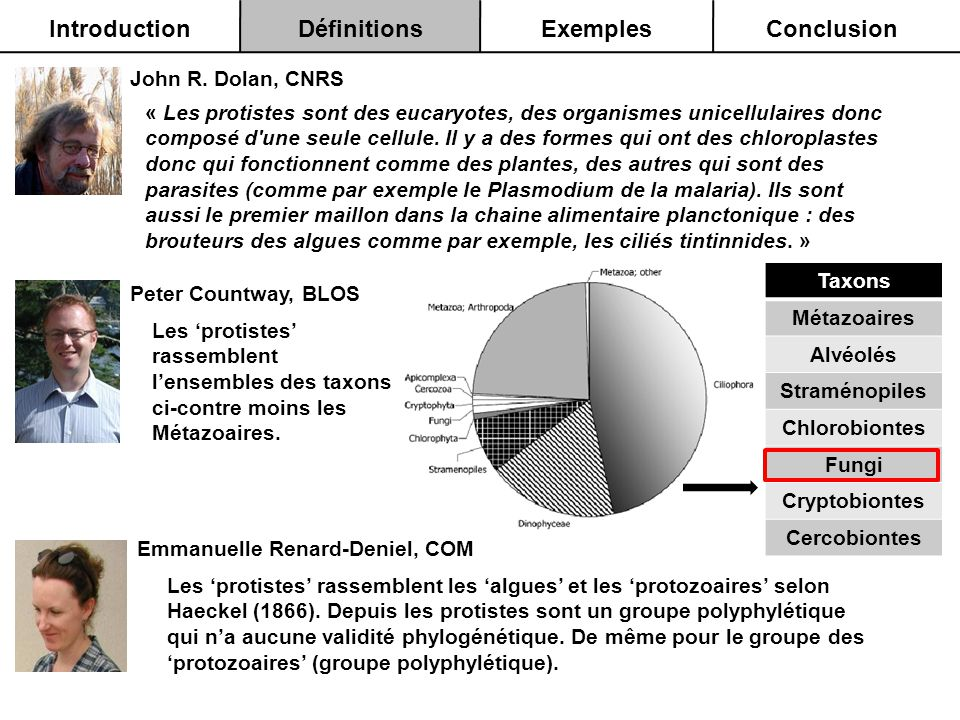Introduction Définitions Exemples Conclusion