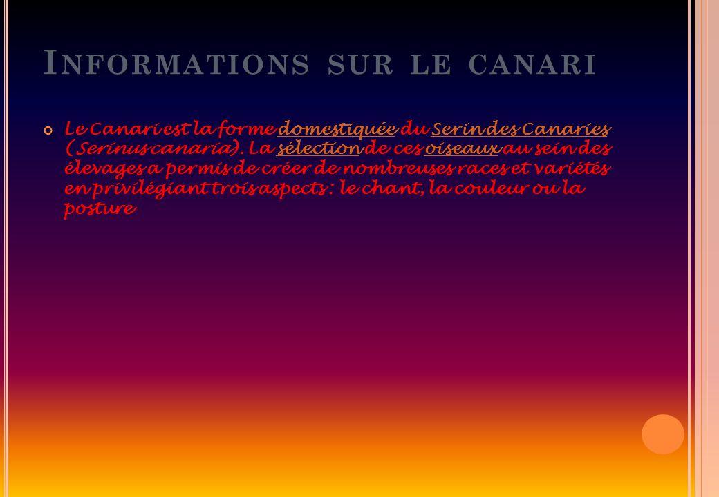 Informations sur le canari
