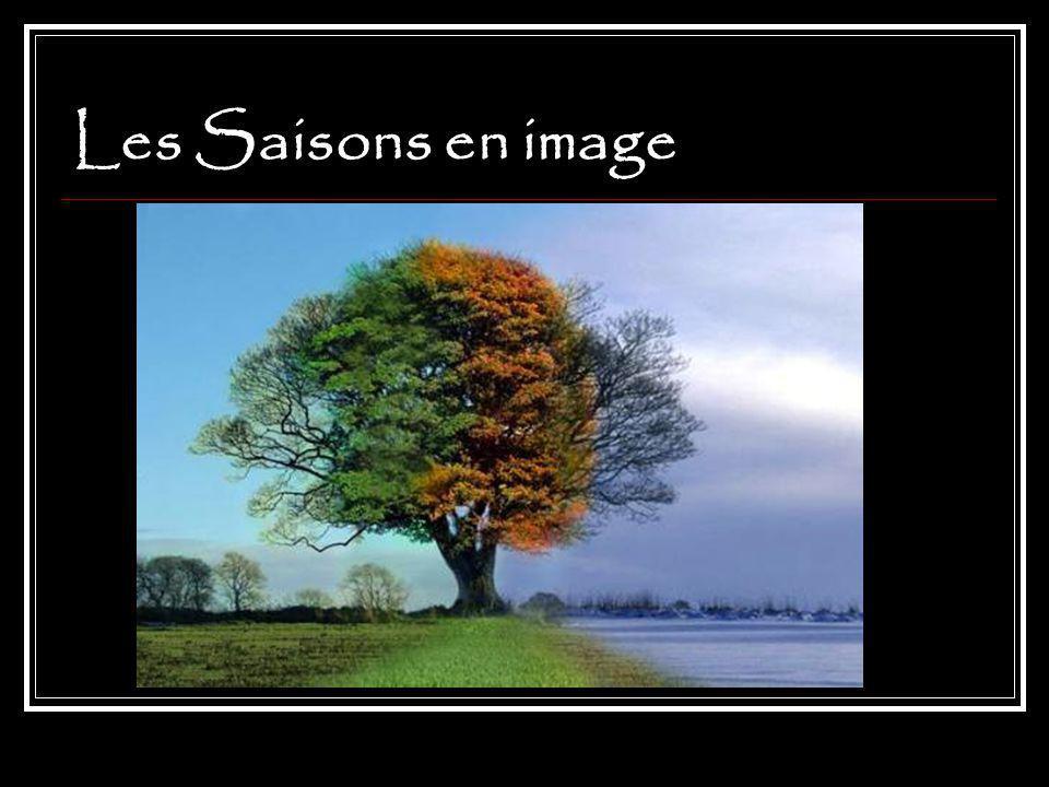 Les Saisons en image