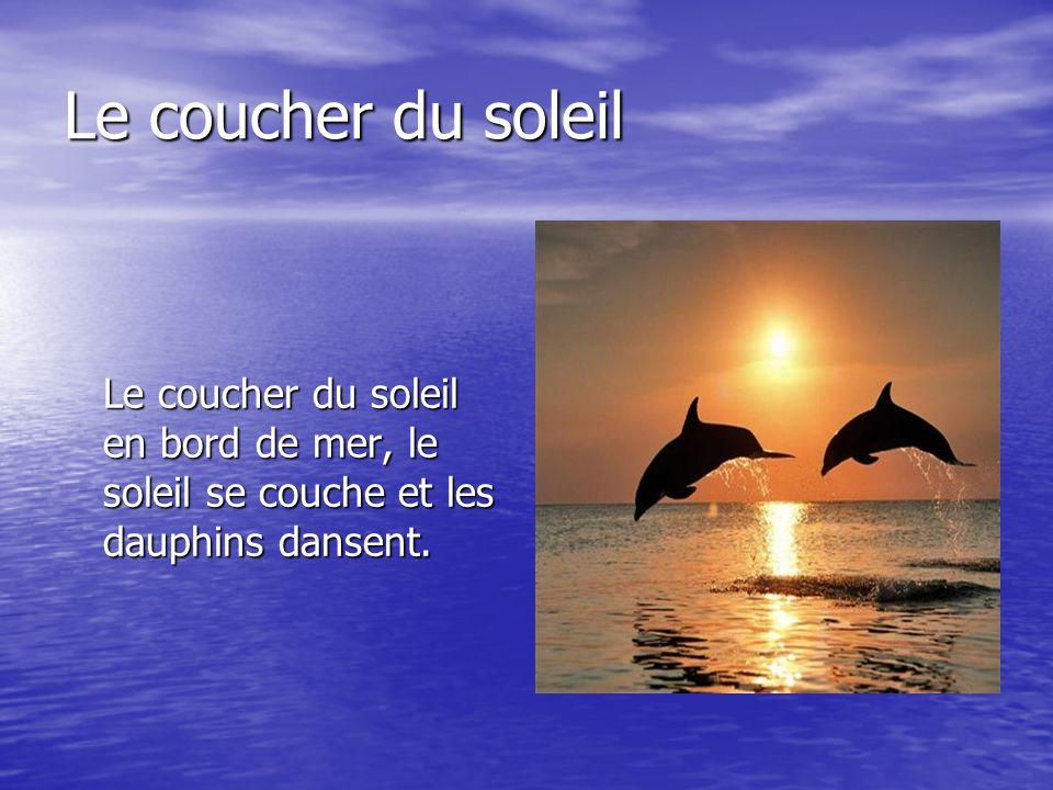 Le coucher du soleil Le coucher du soleil en bord de mer, le soleil se couche et les dauphins dansent.